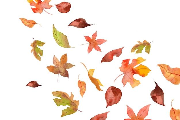 Akwarela spadające jesienne liście