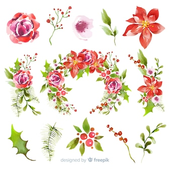 Akwarela świąteczna kolekcja kwiatów i wieńców