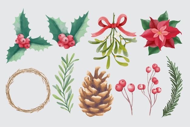 Akwarela świąteczne i zimowe elementy kwiatowe