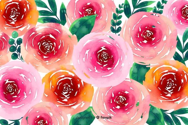 Akwarela tle kwiatów z różami