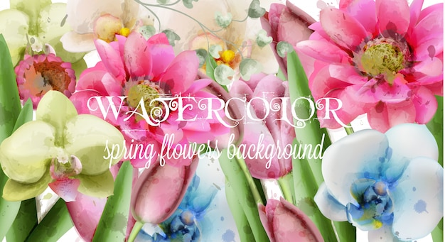 Akwarela tło wiosna kwiaty