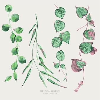 Akwarela tropikalne zielone liście. ilustracja zieleni