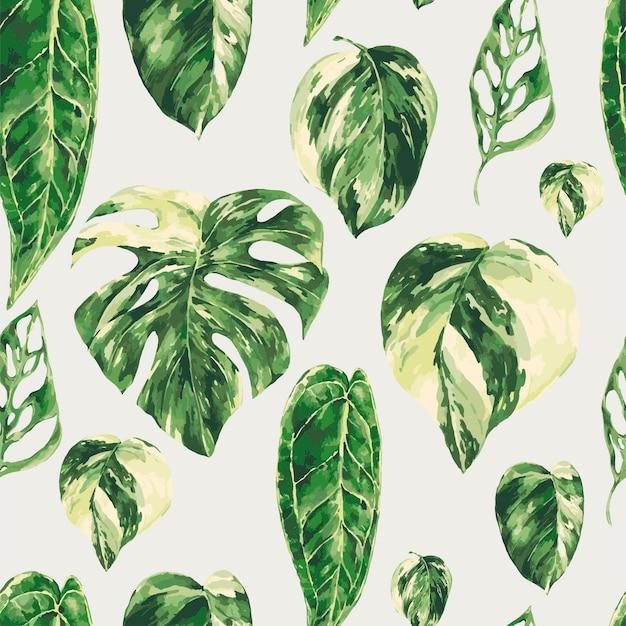 Akwarela tropikalne zielone liście wzór. monstera pstrokata tekstura zieleni, tapeta botaniczna.