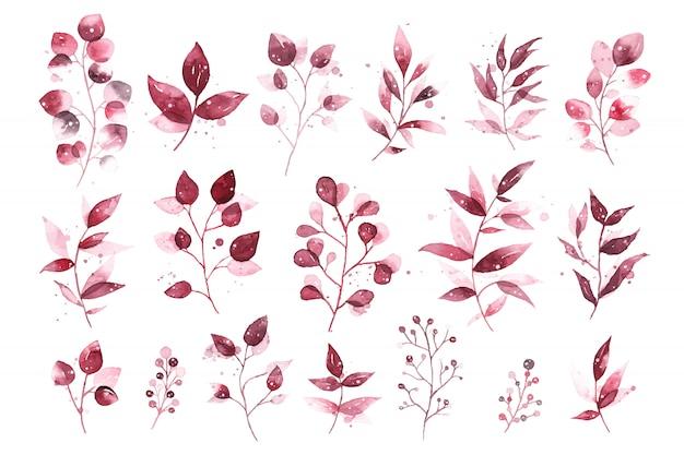 Akwarela tropikalny bordowy bordowy liście na białym tle