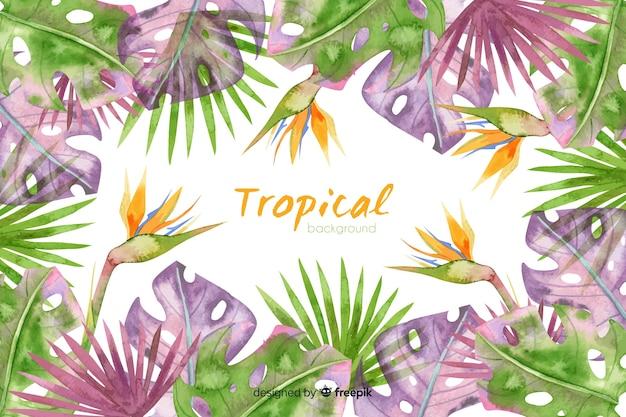 Akwarela tropikalny tło