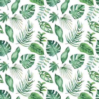 Akwarela tropikalny wzór