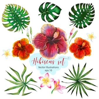 Akwarela tropikalny zestaw na projekt transparentu lub ulotki z egzotycznych liści palmowych, kwiaty hibiskusa.