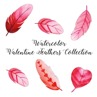 Akwarela valentine feather collection