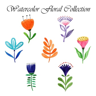 Akwarela valentine feather collection