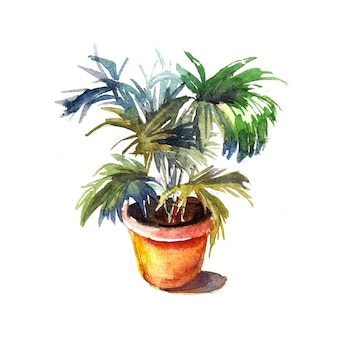 Akwarela wazon doniczkowy z glebą z krytym drzewem