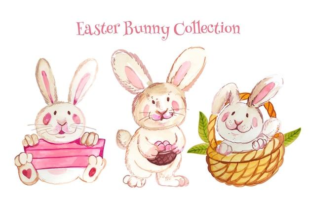 Akwarela wielkanocna kolekcja króliczków
