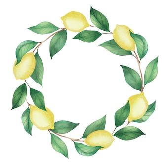 Akwarela wieniec cytryn i zielonych gałęzi, liści. ilustracja