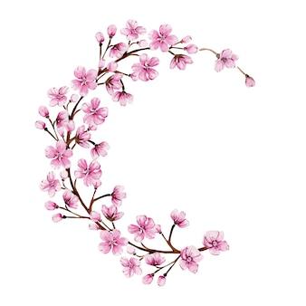 Akwarela wieniec z kwitnącą różową sakurą