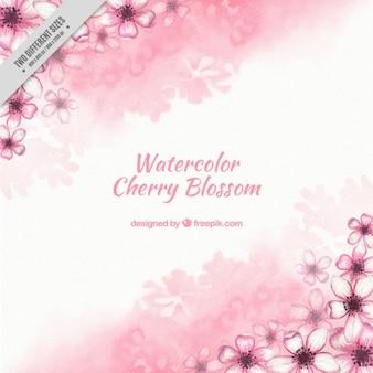 Akwarela wiśniowe kwiaty tła