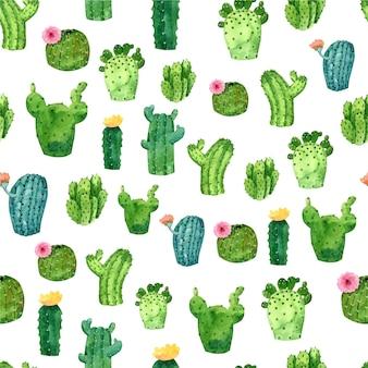Akwarela wzór kaktusa