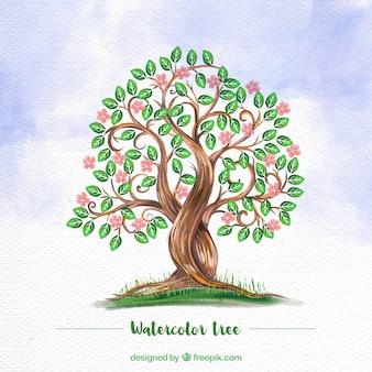 Akwarela z kwiecistym drzewie