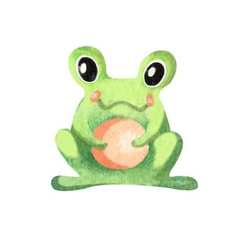 Akwarela żaba