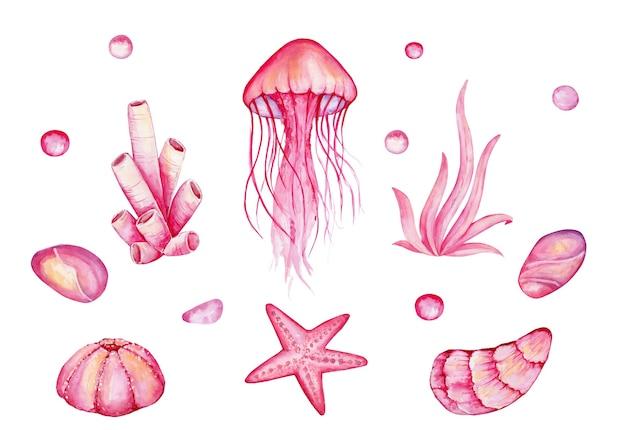Akwarela zestaw elementów podwodnego świata. ręcznie rysowane korale, meduzy, skały, rozgwiazdy, muszle