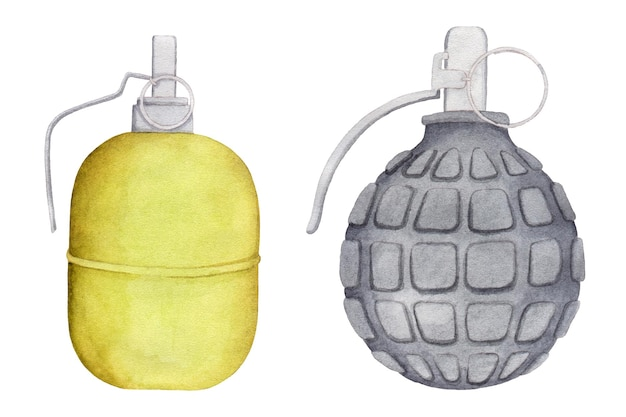 Akwarela zestaw granatów