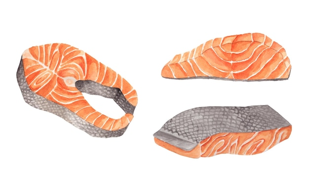 Akwarela zestaw krojonego łososia