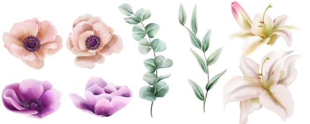 Akwarela zestaw kwiatów hibiskusa i piwonii z zielonymi liśćmi