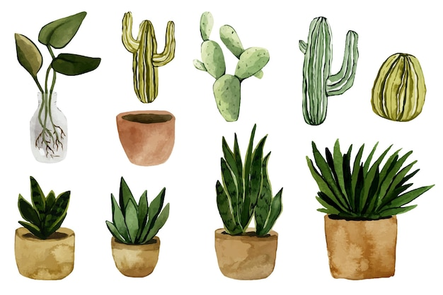 Akwarela zestaw roślin doniczkowych na białym tle