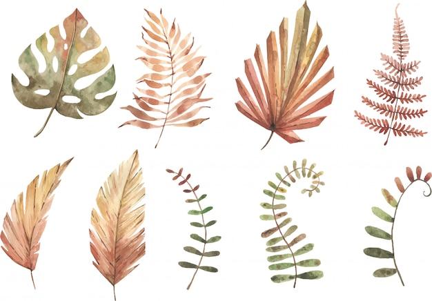 Akwarela zestaw roślin tropikalnych. pastelowe kolory. hnad malował ilustrację. obrazek. element izolowany nowoczesne rośliny egzotyczne. tropikalne kwiaty.