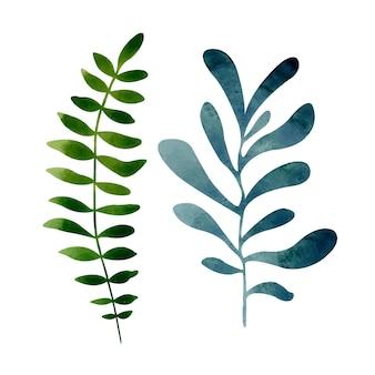 Akwarela zestaw z egzotycznymi zielonymi i niebieskimi liśćmi