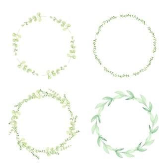 Akwarela zielony eukaliptus pozostawia krąg kolekcja ramek wieniec