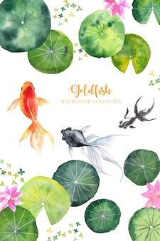 Akwarela złota rybka przepływa przez kolekcję lotosu i liści lotosu.