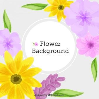 Akwarela żółte stokrotki i kwiaty w tle