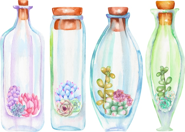 Akwarele butelki z sukulentów i cuctuses w środku