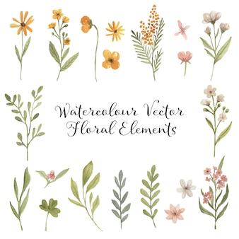 Akwarele kwiatowymi elementami vintage botanika