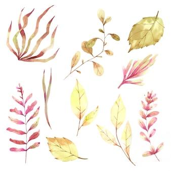 Akwarele ręcznie malowane elementy jesień liść do projektowania