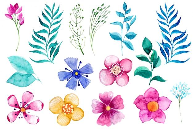 Akwarele ręcznie malowane kwiaty.