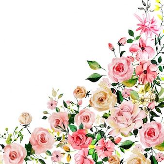 Akwareli menchii róży kwiecisty tło