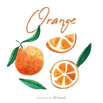 Akwareli owocowy tło z pomarańczami