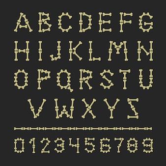 Alfabet kości. zestaw liter i cyfr abc.