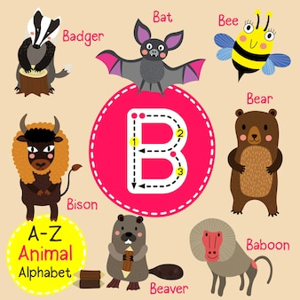 Alfabet litery b zoo