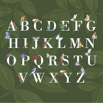 Alfabet owadów i ptaków z motyl, niebieska sójka, pszczoła akwarela ilustracja.