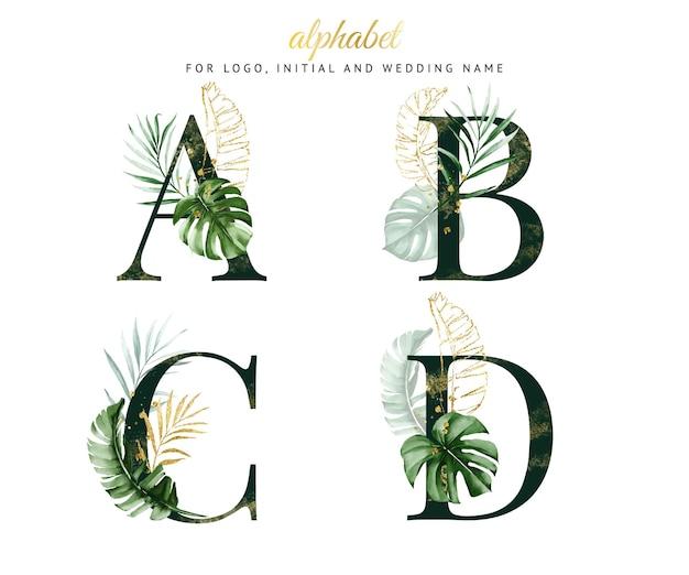 Alfabet zestaw a, b, c, dz zieloną tropikalną akwarelą. na logo, karty, branding itp