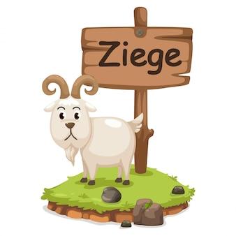 Alfabet zwierząt litera z dla ziege