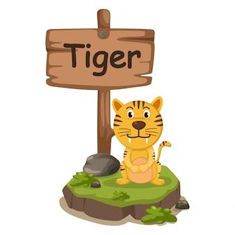 Alfabet zwierząt litery t dla tygrysa