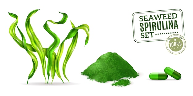 Algi morskie suplement spirulina