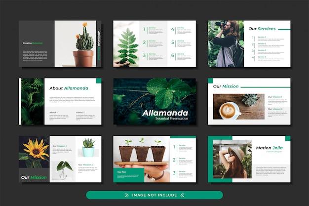 Allamanda zielony szablon prezentacji botanicznej.