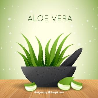 Aloe vera tła w płaskim stylu