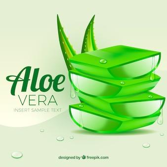 Aloe vera tła