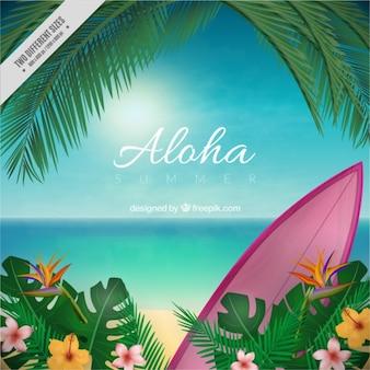 Aloha niewyraźne tło