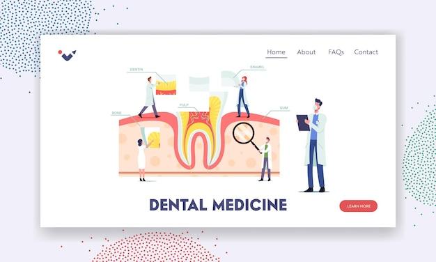 Anatomia zębów i szablon strony docelowej struktury. małe dentyści postacie w ogromnych infografikach zębów z dziąseł, miazgi, kości, zębiny lub szkliwa, plakat pomocy medycznej. ilustracja wektorowa kreskówka ludzie