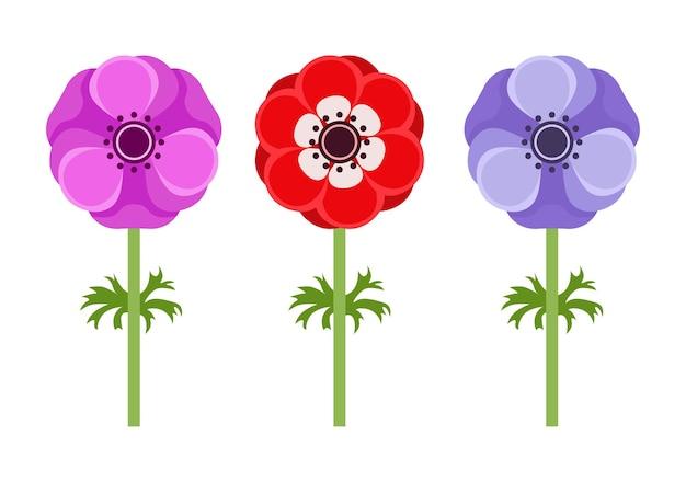 Anemonowe kwiaty płaskie ikony.